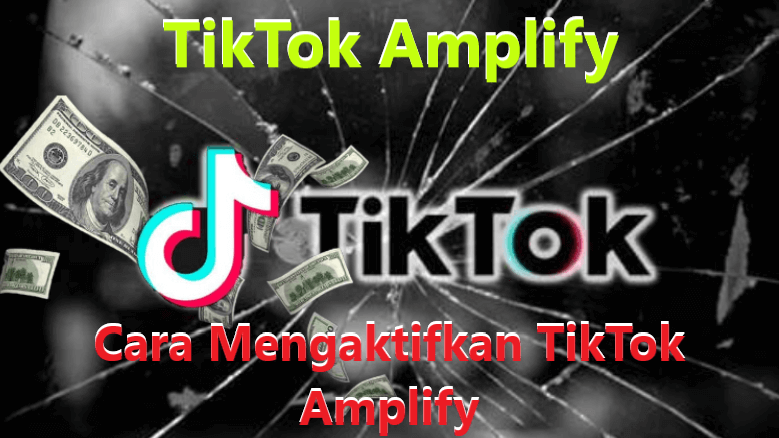TikTok Amplify Berikut Cara Mengaktifkan TikTok Amplify