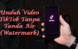 Ssstiktok - Unduh Video TikTok Tanpa Tanda Air ( LOGO )